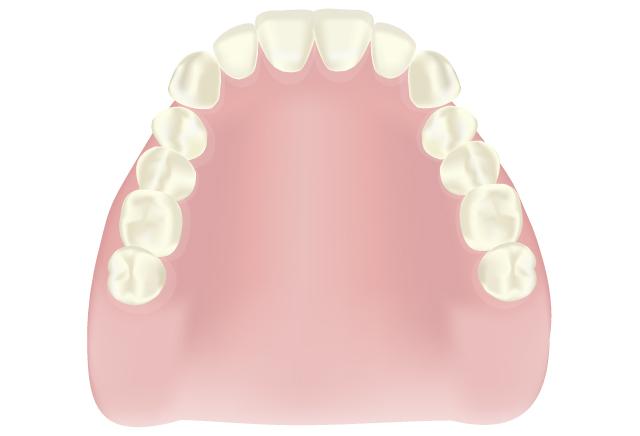 保険の入れ歯|吉祥寺の土日も診療・なお歯科クリニック
